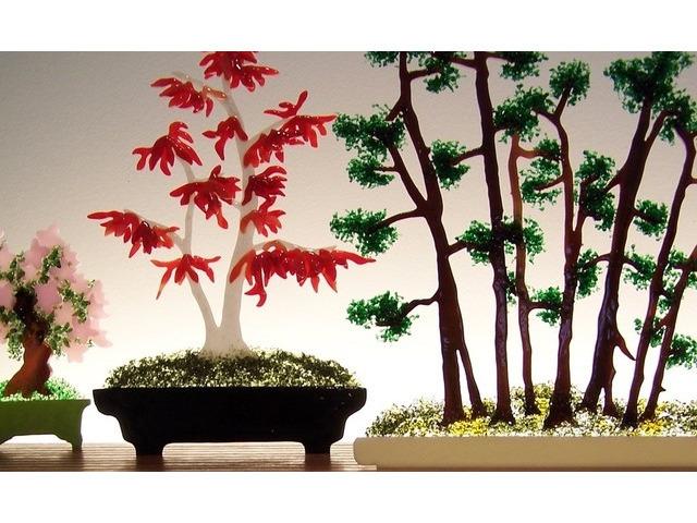Picture of Bonsai Glasscape Lighting Sculpture